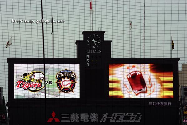 阪神日ハム戦